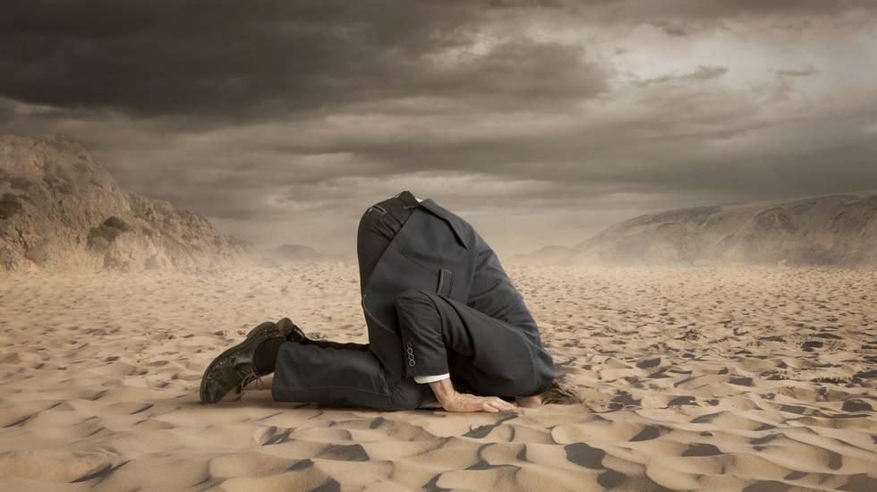 Affari, Nascondere la testa nella sabbia, Struzzo, Humour, Sabbia