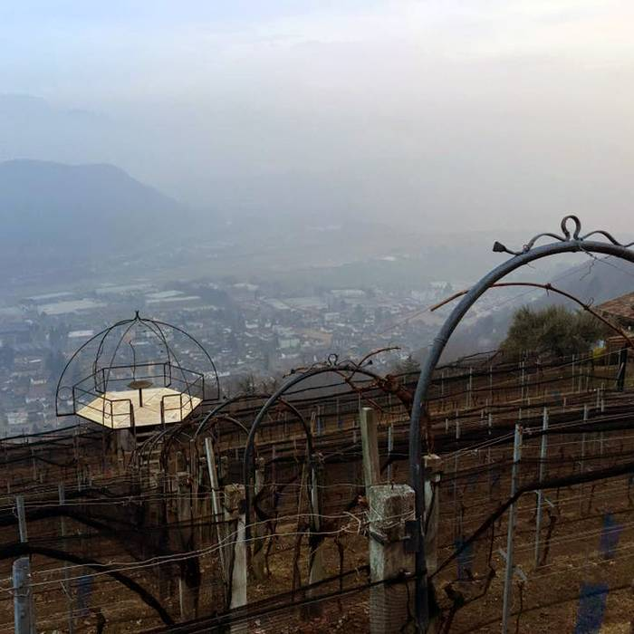 Cantine Monti di Cademario2, Squadra esterna 31.01.17