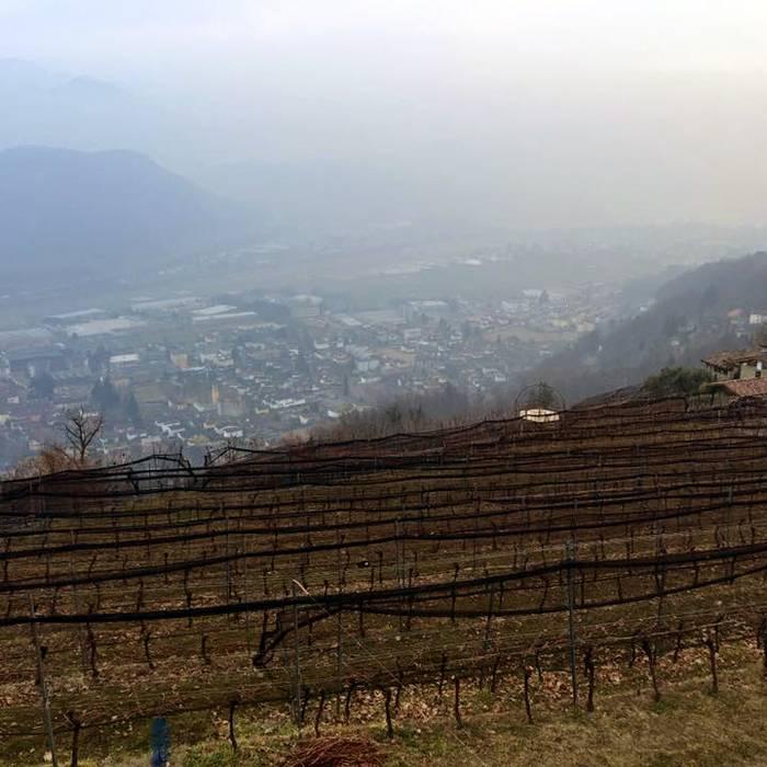 Cantine Monti di Cademario3, Squadra esterna 31.01.17