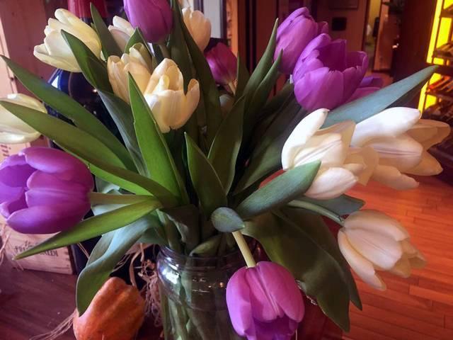 Giornata dei Tulipani di Soroptimist Svizzera, Chiasso, Squadra esterna 10.03.17 - 2