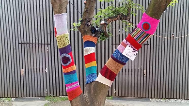 Urban Knitting, la maglia sugli alberi dell'associazione TRaGitto