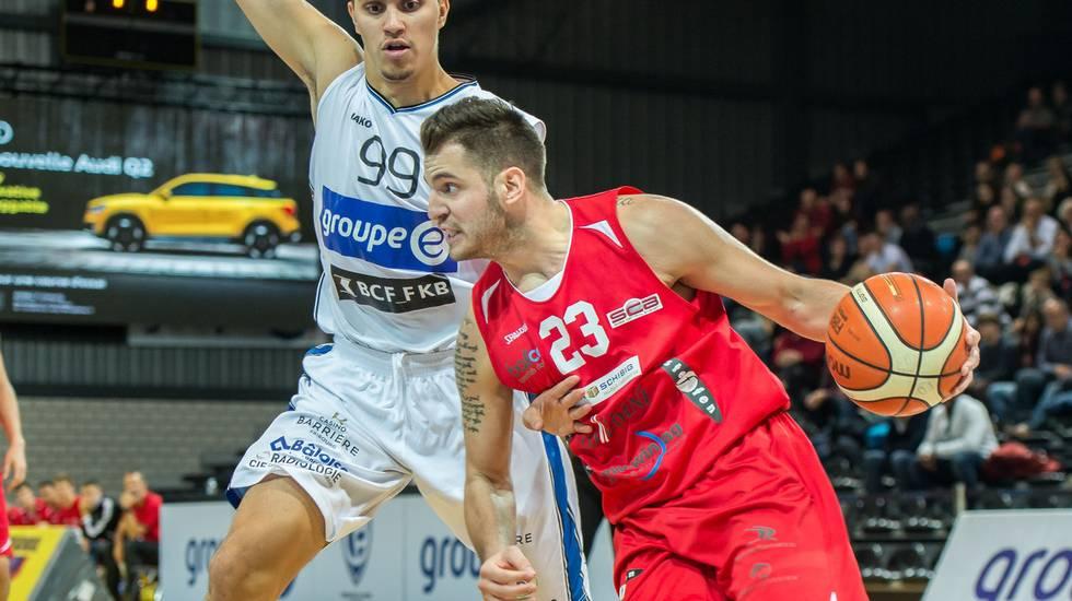 Nikola Stevanovic ai Tigers