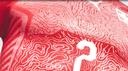 Il Cervino sulla nuova divisa elvetica