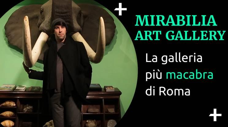 Cult+ Giano Del Bufalo (s)