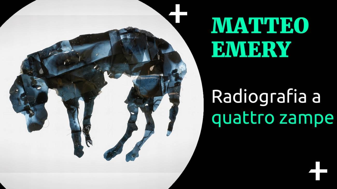 Cult+ Matteo Emery - Radiografia a quattro zampe (l)