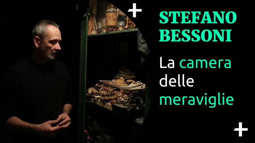 Cult+ Stefano Bessoni - Wunderkammer (m)