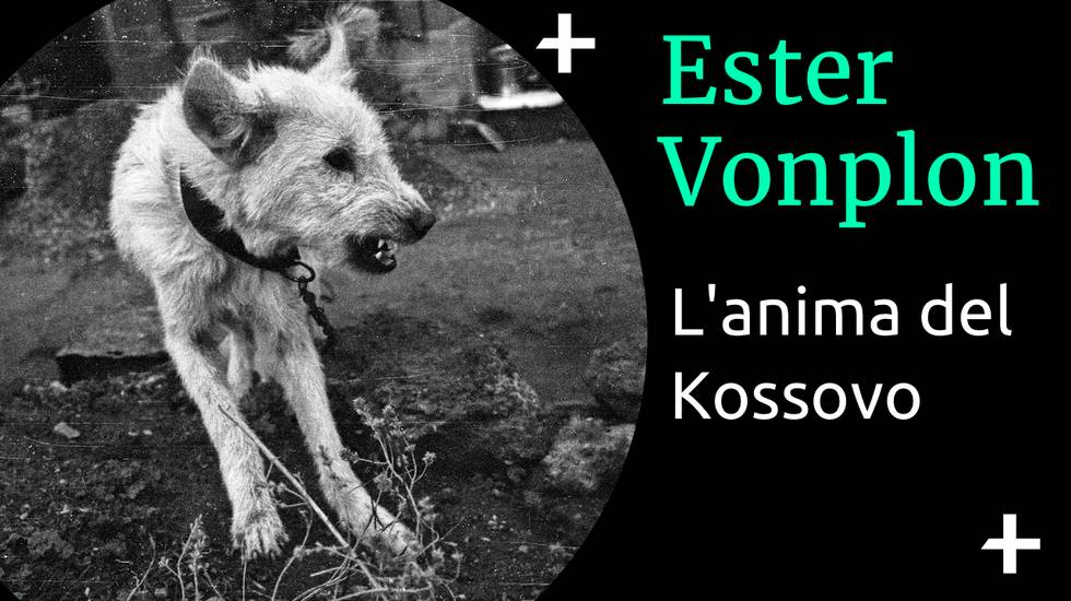 Ester Vonplon - Kossovo (m)