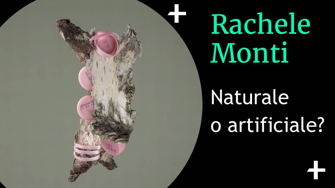 Rachele Monti cover naturale o artificiale.jpg (l)