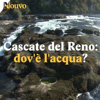 Cascate del Reno: dov'è l'acqua?