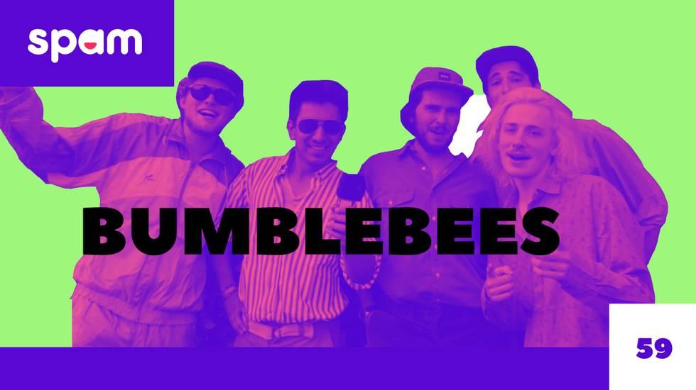 BUMBLEBEES (m)